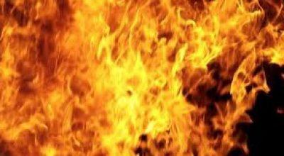 Špekáčky na ohni u usedlosti Vizerka